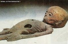 Ufo Evidence: Múmia Extraterrestre