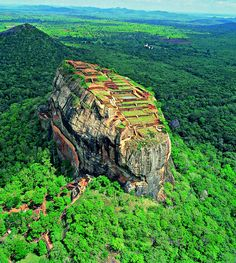 Sigiriya, the spectacular 'Lion rock' fortress, stands majestically overlooking the luscious green jungle surroundings of Sri Lanka.