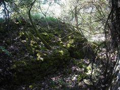 Dornröschens Schloss - Unbekanntes Bauwerk auf dem Sonnenstuhlberg - Kult-Urzeit | Mystische Orte