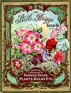 Steele, Briggs Seed Co., Ltd. A Complete Catalogue of Famous Seeds, Plants, Bulbs, Etc. (1898)