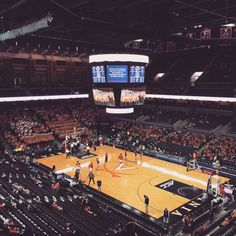 UVA basketball game.