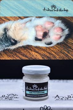 Der Care Pfotenbalsam von Andrea and the Dog macht Pfoten samtig weich und hilft auch bei Liegeschwielen.  Und der duuuuuftet - und wertvolle Kuscheltet bringt er euch auch. Haben also alle etwas davon.   #katzenliebe #pfotenpflege #naturproduktefürtiere #chemiefrei #katzen #pfoten #samtpfoten #naturpur #handmade #andreandthedog Dog Care, Cats, Gatos, Cat, Kitty, Dog Storage, Kitty Cats