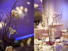 hummingbird-wedding-inspiration