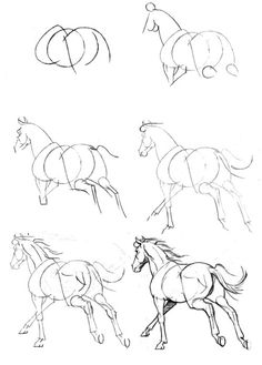 So many horse drawings! The site is in Russian but all of the how to's are like this pin