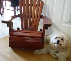 Sebastien Loves His Personalized Adirondack Chair!