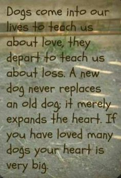 Yep ..yes many dogs,Sugar for 16 yrs,Dakota for 6 yrs & Canuck 12 yrs ,each one took a piece of me when I lost them..