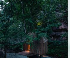 Gallery of The Treehouse / Wee Studio - 12