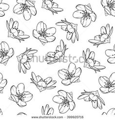 Cherry blossom seamless pattern. Black and white outline vector illustration.