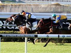 Vancouver (inside) makes his first public appearance since he won the Golden Slipper in M
