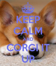 Keep Calm and Corgi it Up