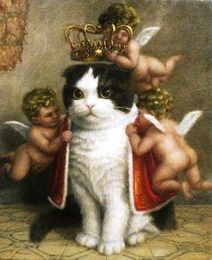 #neko #cat scottish fold