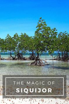 Why Siquijor is a must for your Philippines itinerary... THE MAGIC OF SIQUIJOR | Above Us Only Skies