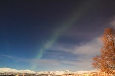 Visiting Tromsø during Polar Night - What to expect