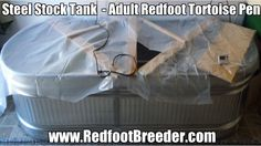 More ways to keep the humidity and heat up in your Redfoot Tortoise pen if you use a steel stock tank as I am in this video. Tortoise Enclosure Indoor, Steel Stock, Stock Tank, Tortoises, Turtles, Tortoise