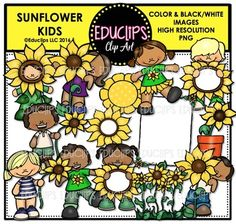 This is a collection of kids having fun with sunflowers. It includes child dressed as a sunflower, children hiding behind sunflowers, children holding sunflower poster boards, kids with sunflowers on shirts, flowerpot, row of sunflowers, sun and sunflower page border (comes with white filled and transparent centers).32 images (16 in color and the same 16 in B&W)This set contains all of the images shown.This set is also available (at a discount) as part of the FALL FUN CLIP ART MEGA BUNDLE...