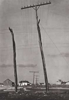 Paul Strand - Telegraph Poles, Texas, 1915. © Aperture Foundation, Inc., Paul Strand Archive. S)