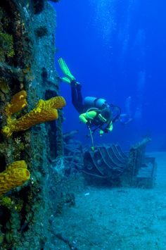 15 Spectacular Dive Sites You Have to See to Believe Best Scuba Diving, Scuba Diving Gear, Cave Diving, Snowboard, Diver Down, Scuba Diving Equipment, Snorkelling, Sea And Ocean, Underwater World
