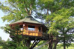 まるで秘密基地気分!日本国内で宿泊できる「ツリーハウス」10選 | RETRIP