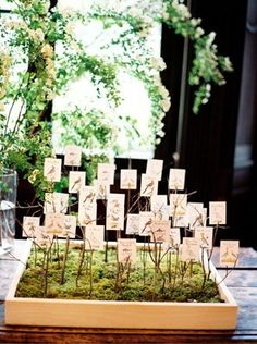 Flowers & Decor, Stationery, Real Weddings, Wedding Style, ivory, green, brown, Escort Cards, Classic Real Weddings