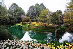 Taizi Bay Park, Hangzhou, China