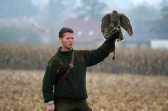 Czech-Falconry-Birds-Hunting-Bohemian-Photo-100