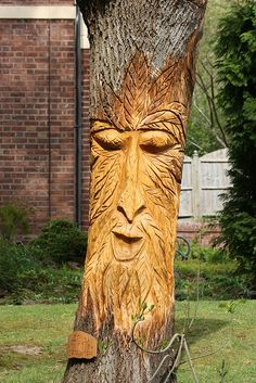 I would like to learn how to carve something into a tree like this