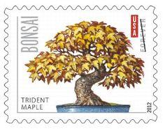 2012 Trident Maple Forever Stamp.