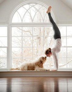 Anya does this when I'm doing yoga or exercising, except she kisses me all over my face because she knows I'm defenseless. I love dogs. :)