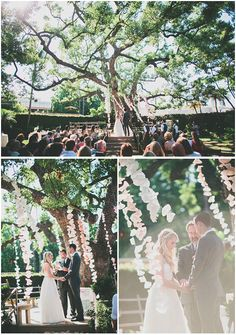 Married under a huge oak tree strung with billowing paper garlands