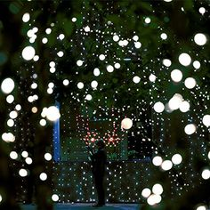Star shower laser lights new 2017 solar christmas lights red green heavy duty commercial g40 globe led string lights17ft 25 outdoor cool white christmas lightspatio garden seasonal aloadofball Choice Image