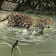 Fabrizio 'Fuz' Caforio is talented artist / painter born from Italian parentage in Johannesburg, South Africa. He specialises in wildlife portraiture of rare an Wildlife Paintings, Wildlife Art, Animal Paintings, Big Cats Art, Cat Art, Jungle Animals, Animals And Pets, Beautiful Cats, Animals Beautiful