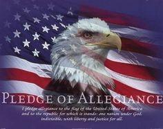 """I Pledge Allegiance!"""