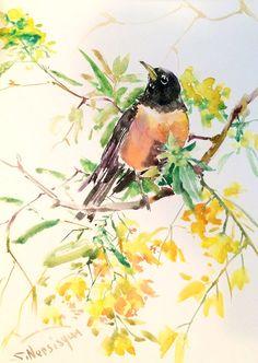 American Robin, 15 X 11 in, original watercolor painting, robin art, robin bird