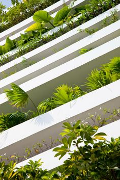 "FAÇADE WITH INTEGRATED PLANTERS, NOT A SUPERFICIAL GREENWALL ""WALLPAPER"""