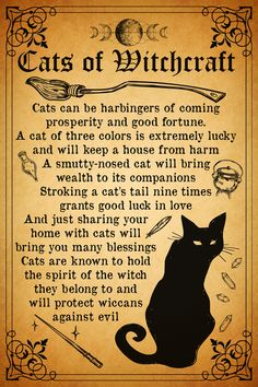 WITCHCRAFT101: Cats Of Witchcraft Witchcraft Spell Books, Witch Spell Book, Magick Spells, Moon Spells, Witchcraft Symbols, Wiccan Books, Hoodoo Spells, Wiccan Magic, Wiccan Witch