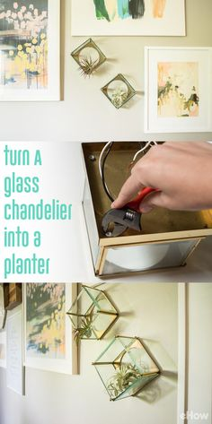 How cool is this? You can turn an outdated glass chandelier into a great wall mounted planter perfect for succulents or any air plant! Talk about a great upcycle project! Grab the how-to here: http://www.ehow.com/how_12343332_turn-glass-chandelier-planter.html?utm_source=pinterest.com&utm_medium=referral&utm_content=freestyle&utm_campaign=fanpage