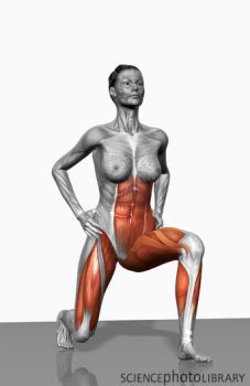 a lunge is not just a leg exercise - check out that core working