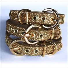 gold dog collar. makes me wish i had a dog. #anotherpolishjoke
