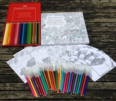 I Have The Same Colored Pencils But Will Be Coloring BooksAdult