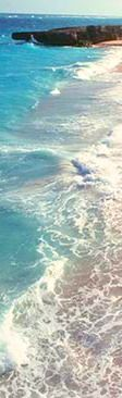 #caribbean #caribbeanlifestyle #beach