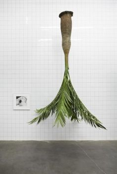 New Museum_Rosemarie Trockel_2012_benoit_Pailley