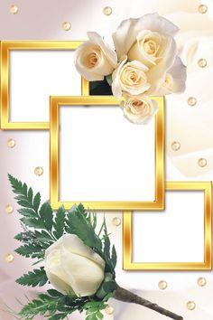 Birthday Photo Frame, Happy Birthday Frame, Birthday Frames, Photo Frame Wallpaper, Framed Wallpaper, Flower Picture Frames, Flower Frame, Photo Frame Maker, Foto Frame