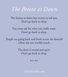 """*""""The breeze at dawn has secrets to tell you. Don't go back to sleep. You must ask for what you really want. Don't go back to sleep. People are going back and forth across the doorsill where the two worlds touch. The door is round and open. Don't go back to sleep."""" ~Rumi <3 <3 <3"""