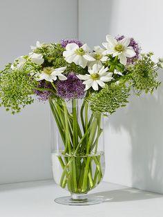 Arrangement of anemones, Queen Anne's Lace, and allium in our Amfora vase.