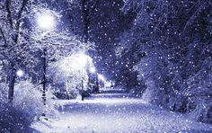 Winter Night Ultra HD Desktop Background Wallpaper for : Multi Display, Dual Monitor : Tablet : Smartphone Winter Szenen, Winter Magic, Winter Christmas, Winter Season, Christmas Time, Christmas Scenery, Winter Park, Christmas Carol, French Christmas
