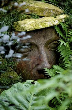 The Face in the Garden