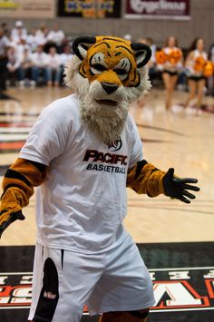 Pacific Tigers mascot, Powercat