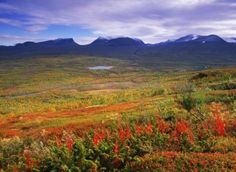 Abisko National Park - wow!