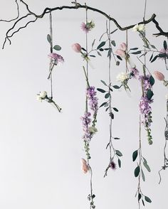 Beautiful Floral Backdrop | Simple and Elegant hanging flower wall Creative Wife & Joyful Worker (@creativewifeandjoyfulworker) • Instagram photos and videos