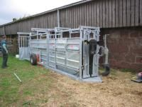 Mobile Cattle Crate